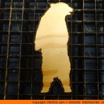 custom-silhouette-x6 Bear Standing Shape (0001)