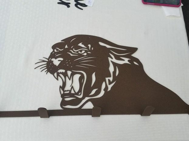 mountain lion rack