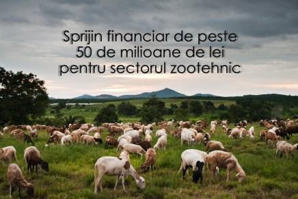 Sprijin financiar de peste 50 de milioane de lei pentru sectorul zootehnic