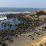 Tidepools, Cabrillo National Monument Foundation