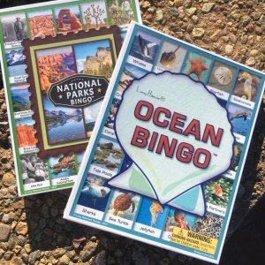 Two bingo game boxes, one showing ocean critters and the other showing national parks.