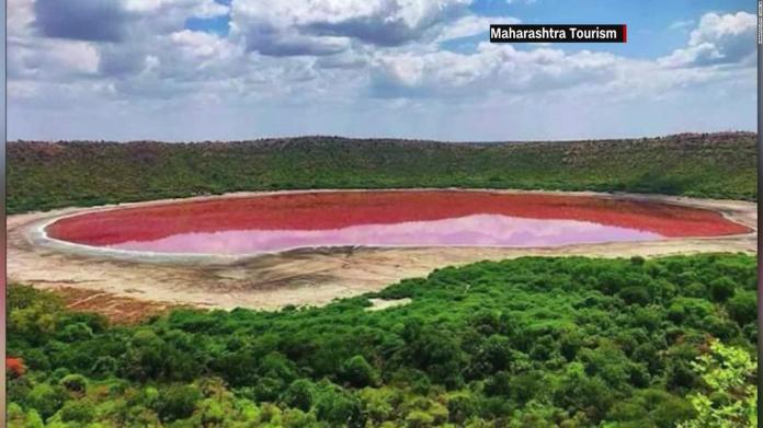 India: Lake Lonar turns pink