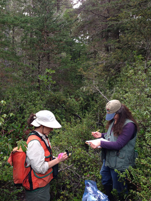 Botanists in Northern California. Photo by Mona Robison.