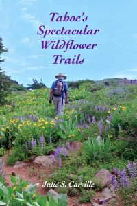Tahoe's Spectacular Wildflower Trails