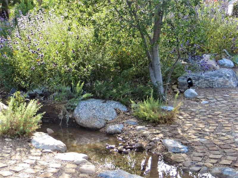 Small creek created for irrigation. Credit Dennis Mudd.