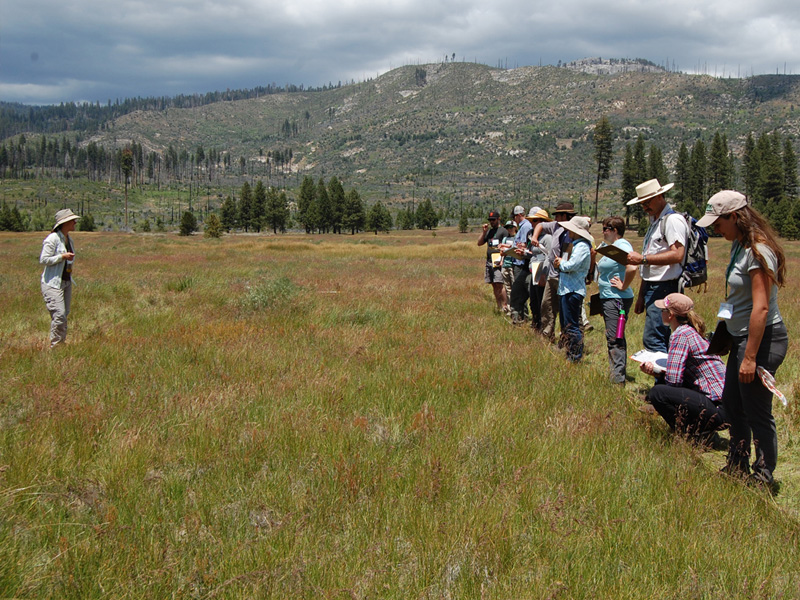 Vegetation Sampling workshop