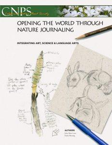 Opening the World Through Nature Journaling