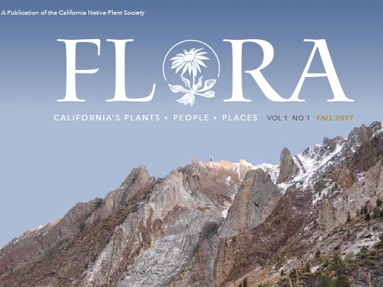 Flora Volume 1 Number 1 cover