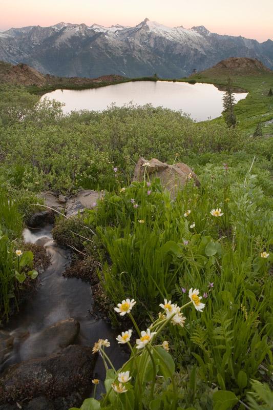 Klamath meadow. Credit Robert Wick.