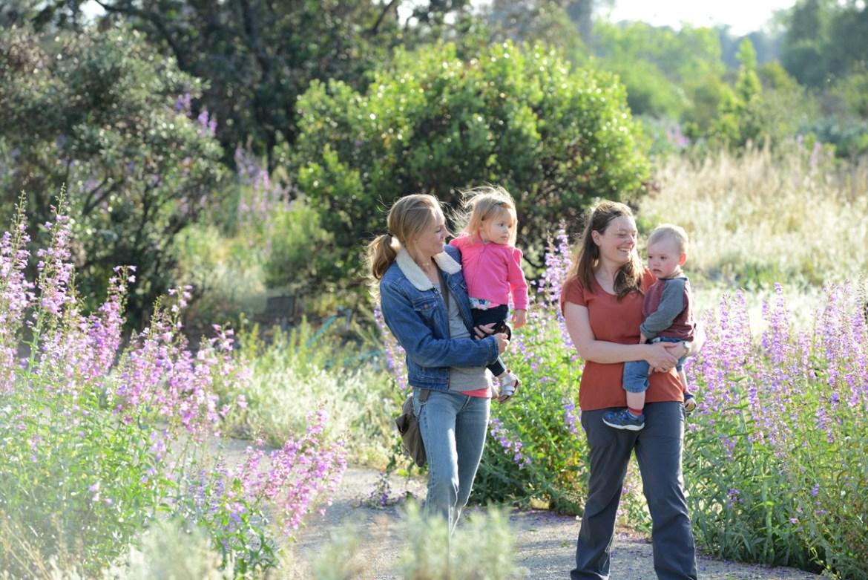 Credit: Rancho Santa Ana Botanic Garden.