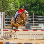 Cayman show jumping team placed third