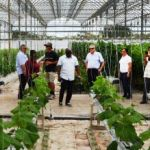 St Kitts agriculture officials tour Cayman farms