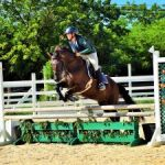 Equestrians take on combined challenge