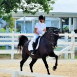 Cayman equestrians prove best in Caribbean