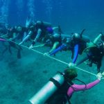 Cayman's women divers break their world record