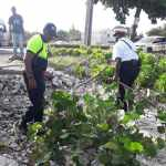 Police officer organises waterfront clean-up