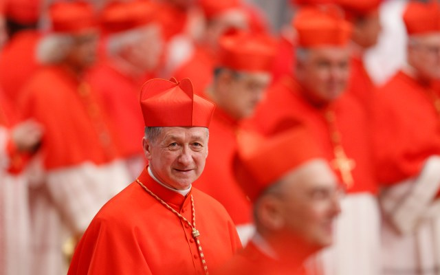 New Cardinal Blase J. Cupich of Chicago attends a consistory led by Pope Francis in St. Peter's Basilica at the Vatican Nov. 19. The pope created 17 new cardinals. (CNS/Paul Haring)