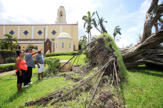 Parishioners point at a fallen tree uprooted on the grounds of St. Mary Cathedral in Miami after the passing of Hurricane Irma. (CNS/Marlene Quaroni, Florida Catholic)
