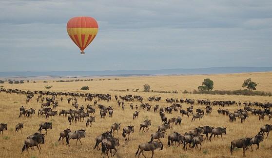 Masai Mara and the Serengeti, Kenya and Tanzania