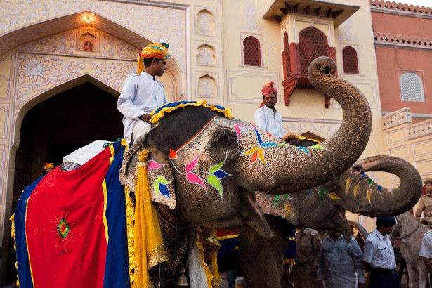 Jaipur Elephant ride to Amber Fort