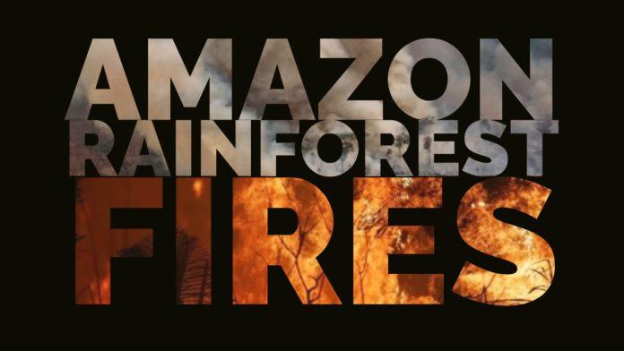 Amazon Rain forest Fires