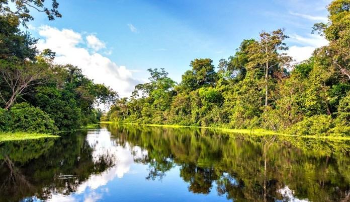 amazon wet wilderness