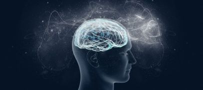 The brain is a complex focal point to study