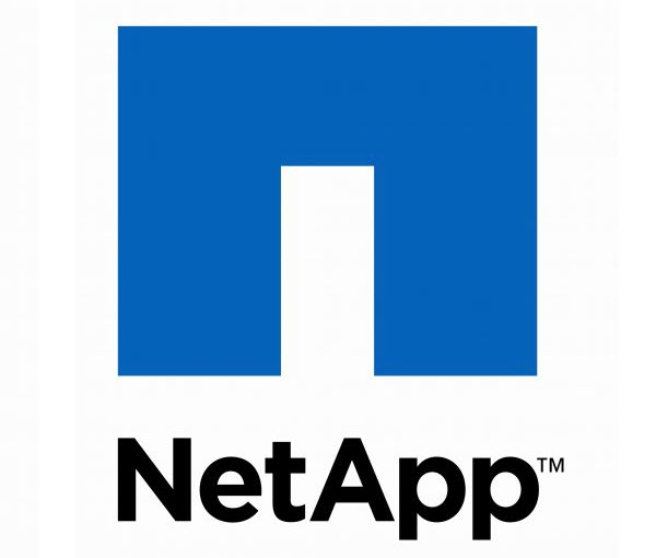 NetApp's Guide For Choosing The Right Cloud Service Provider 2