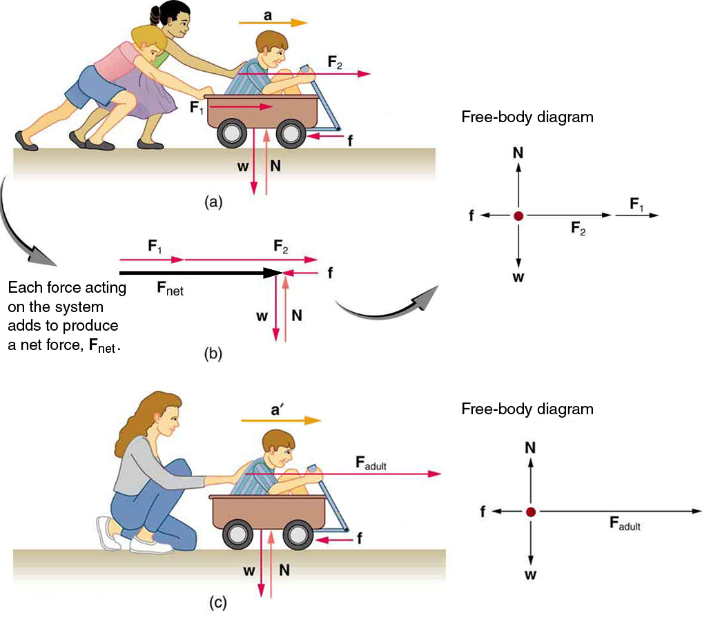 Newton S Second Law Of Motion Concept Of A System