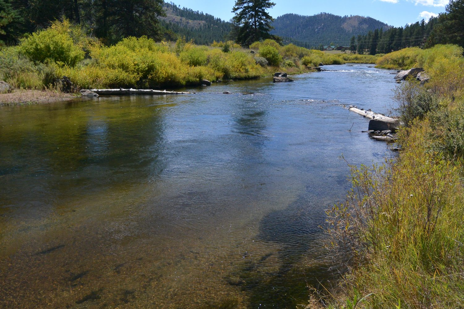 Upper South Platte River with log restoration structures