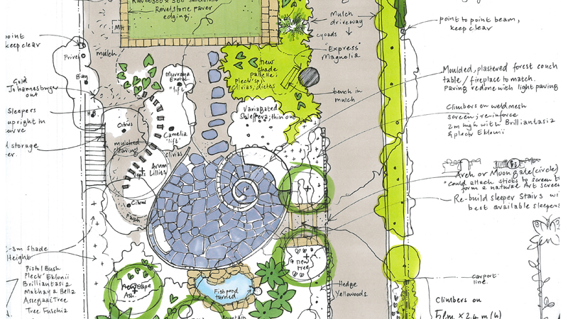 The sketch plan for the forest spiral