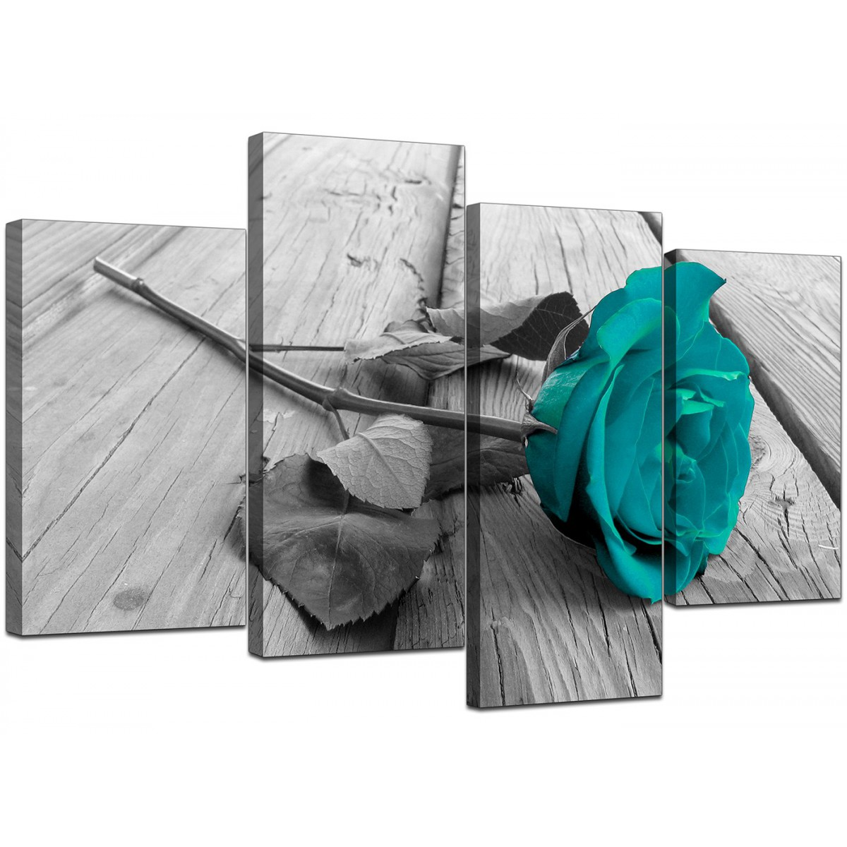Canvas Prints UK Of Teal Rose In Black Amp White For Your