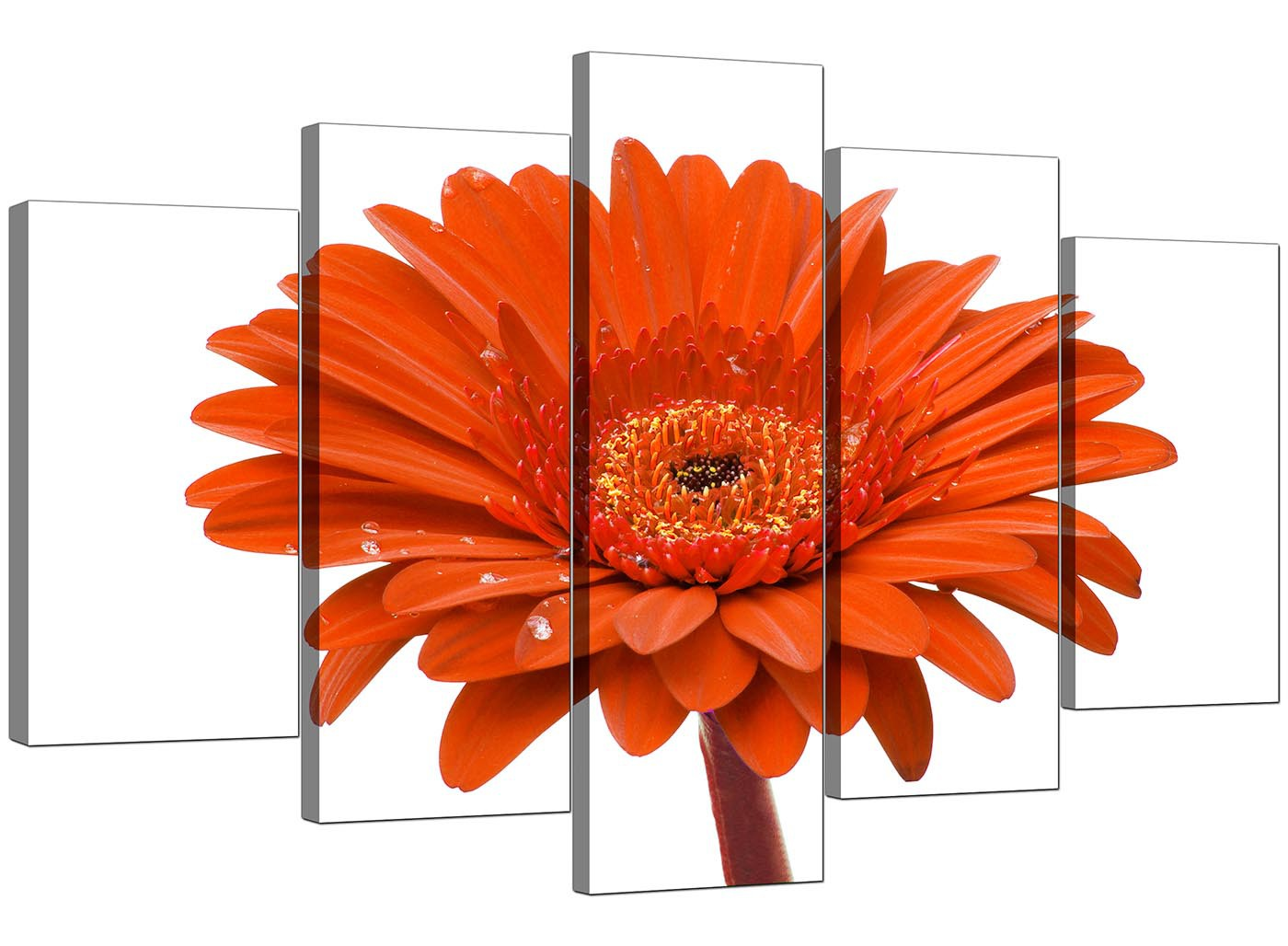 Extra Large Flower Canvas Prints 5 Part In Orange