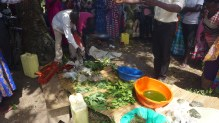 sorting plant material for the soap making process