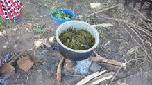 cooking of plant material in the soap making process