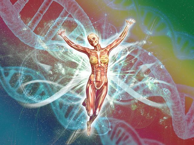 menschlicher Körper als Wunderwerk