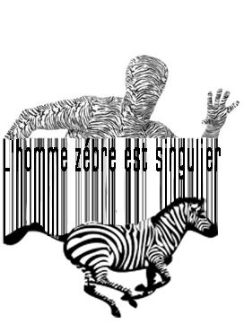 Le zèbre est un animal qui se fond dans la savane
