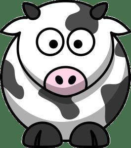 vache ruminant