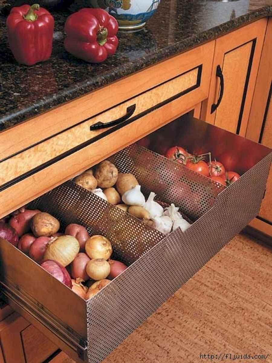 100 Brilliant Kitchen Ideas Organization On A Budget (77)