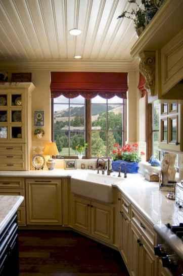 70 Pretty Kitchen Sink Decor Ideas (7)