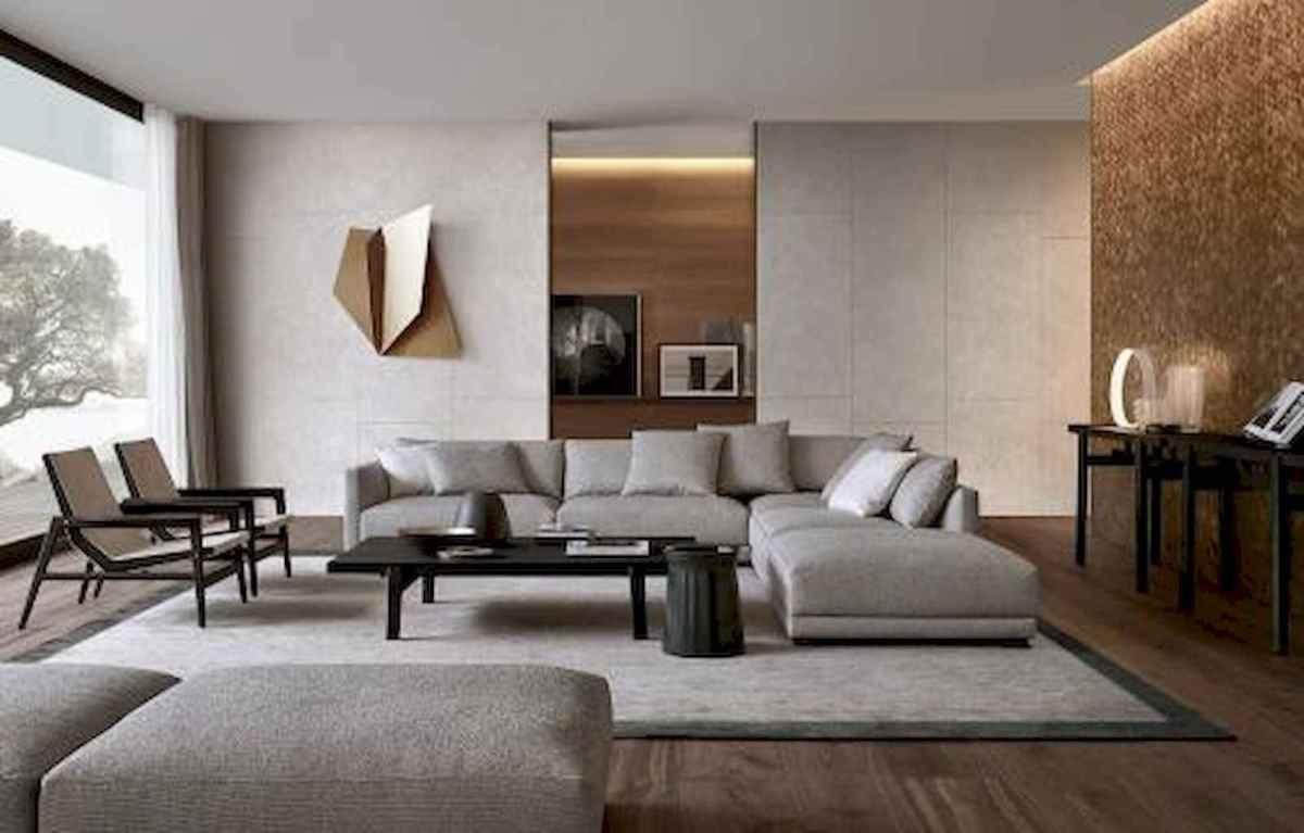 20 Contemporary Living Room Ideas Decorations (14)