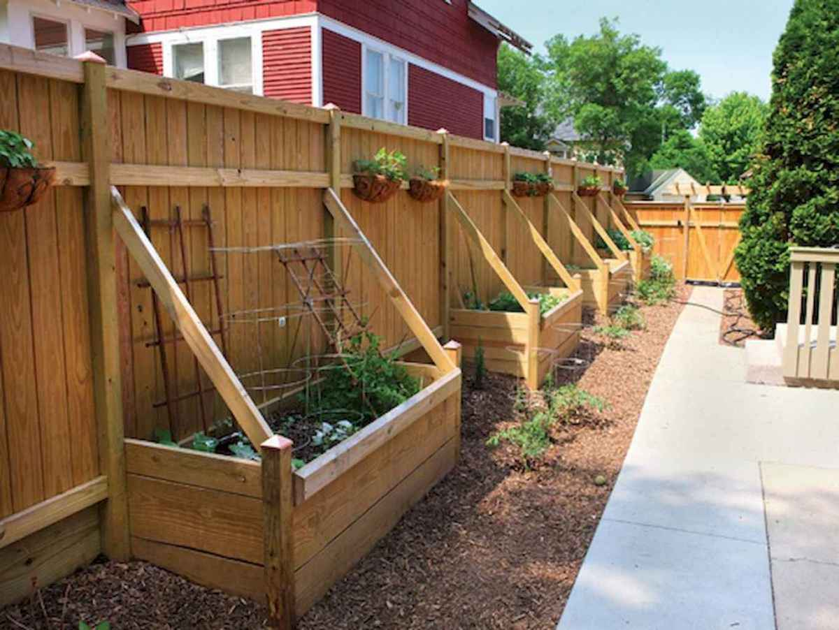 70 Gorgeous Backyard Privacy Fence Decor Ideas on A Budget (32)