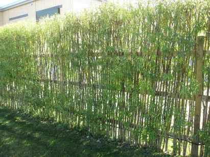 70 Gorgeous Backyard Privacy Fence Decor Ideas on A Budget (47)