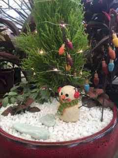 45 Beautiful Christmas Fairy Garden Decor Ideas (20)