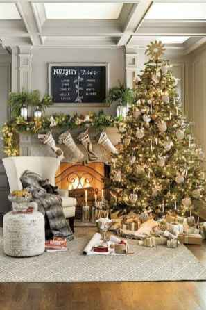 60 Elegant Christmas Decor Ideas (13)