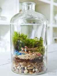 30 Beautiful Indoor Fairy Garden Ideas (1)