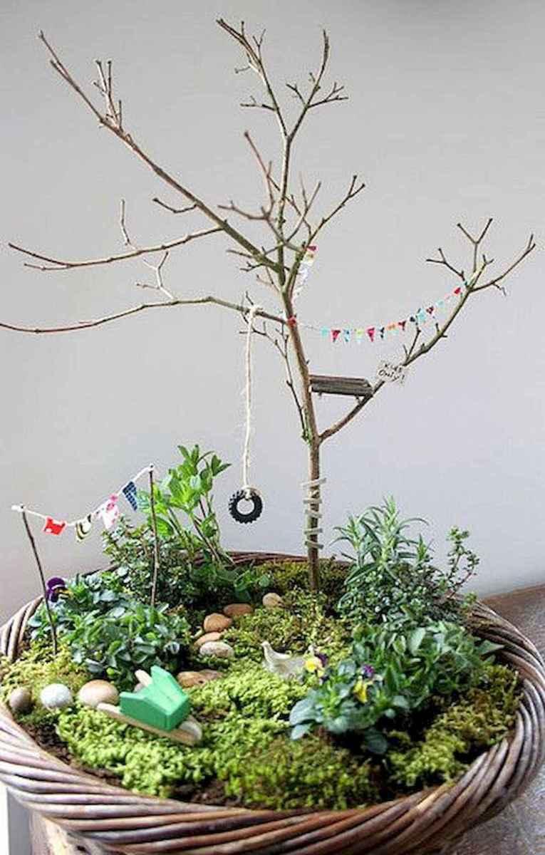 30 Beautiful Indoor Fairy Garden Ideas (5)