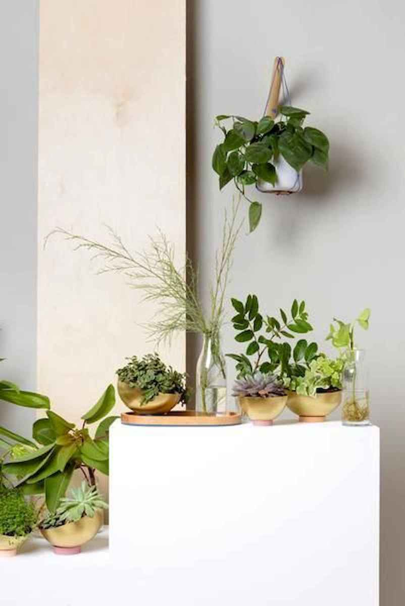 40 Easy To Try Hydroponic Gardening For Beginners Design Ideas And Remodel (30)