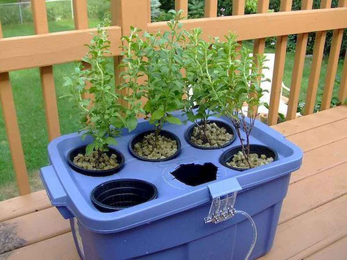 40 Easy To Try Hydroponic Gardening For Beginners Design Ideas And Remodel (37)