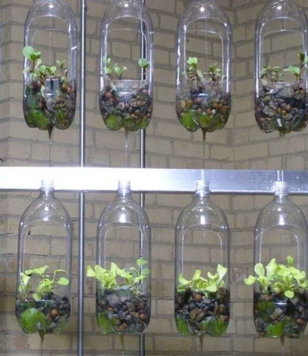 40 Easy To Try Hydroponic Gardening For Beginners Design Ideas And Remodel (4)